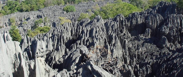 Madagascar_Tsingy_De_Bemaraha