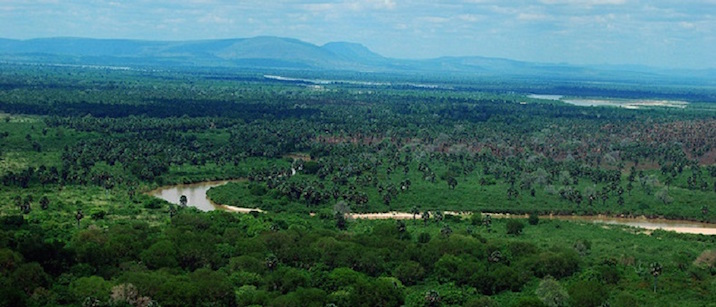 Tanzania – Selous Game